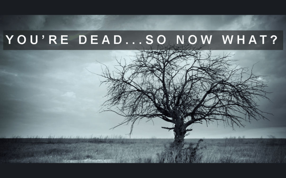 You're Dead, So Now What?