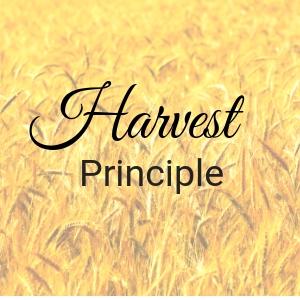 The Harvest Principle